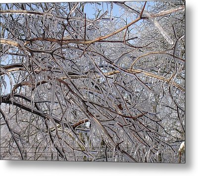 Ice In December Metal Print by Dusty Reed