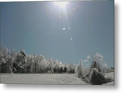 Metal Print featuring the photograph Ice Kissed by Ellen Levinson