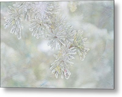 Ice Needles Metal Print