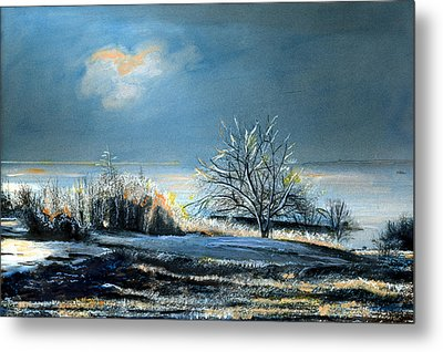 Ice Storm Coast Of Maine Metal Print