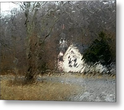 Metal Print featuring the photograph Ice Storm by Steven Huszar