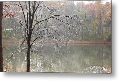 Metal Print featuring the photograph Ice Tree by Bill Woodstock