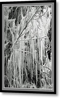 Icicles In Black And White Metal Print by Carol Groenen