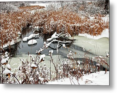 Icy Pond Metal Print by Aimee L Maher Photography and Art Visit ALMGallerydotcom