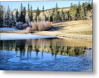 Icy Reflections Metal Print