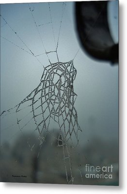 Metal Print featuring the photograph Icy Spiderweb by Ramona Matei