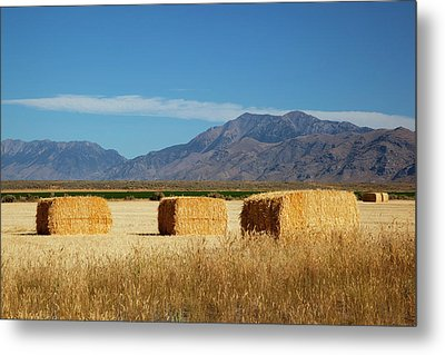 Idaho, Butte County, Hay Bales Metal Print