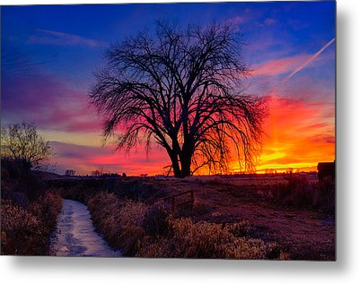Idaho Winter Sunset Metal Print by Greg Norrell