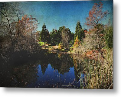 If I Could Metal Print by Laurie Search