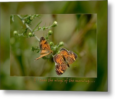 If I Take The Wings Of The Morning Metal Print by Denise Beverly