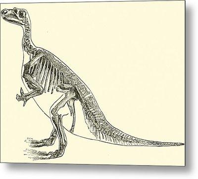 Iguanodon Metal Print