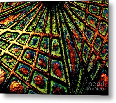 Illusions Metal Print by Lori-Anne Fay