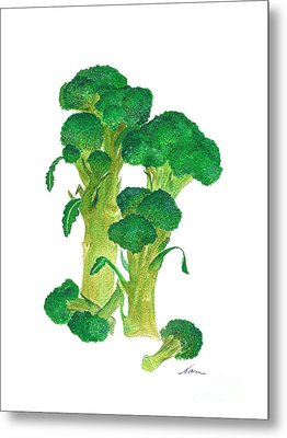 Illustration Of Broccoli Metal Print