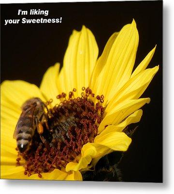 Honey Bee Sweetness Metal Print