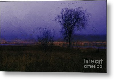 Metal Print featuring the photograph Impressionist Landscape by Julie Lueders