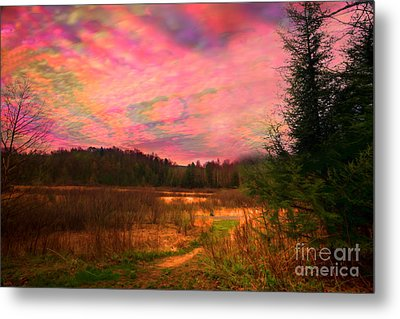 Impressionistic Morning View Of West Virginia Botanic Garden Metal Print by Dan Friend