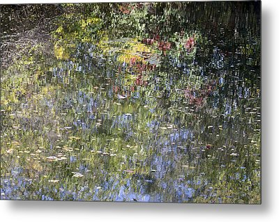 Metal Print featuring the photograph Impressions Of Autumn by Andrew Pacheco