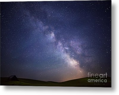 In A Blink Of An Eye Metal Print by Beve Brown-Clark Photography