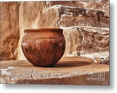 In Another Life Metal Print by Sandra Bronstein