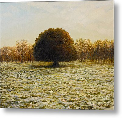 In Anticipation Of The Spring Metal Print by Kiril Stanchev