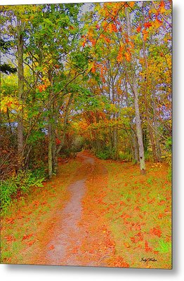 In Beauty I Walk Metal Print