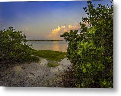 In Coming Tide Metal Print by Marvin Spates