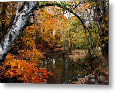 In Dreams Of Autumn Metal Print by Kay Novy