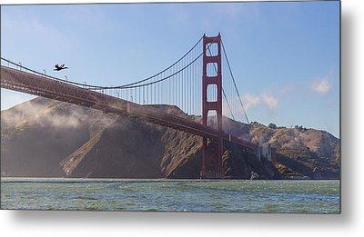 In Flight Over Golden Gate Metal Print by Scott Campbell