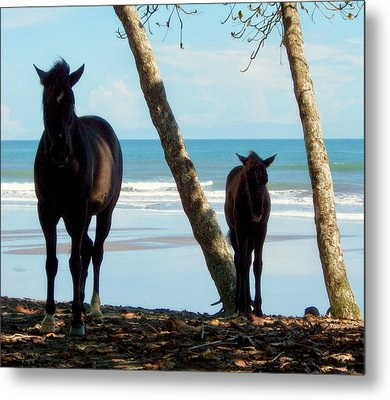 In Her Image Metal Print by Karen Wiles