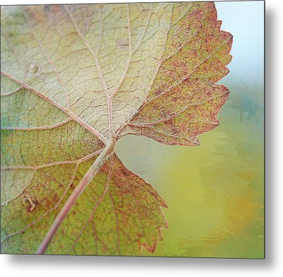 In Honor Of Autumn Metal Print by Fraida Gutovich