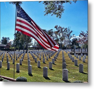 Metal Print featuring the photograph In Honor Of Our Troops by Victor Montgomery