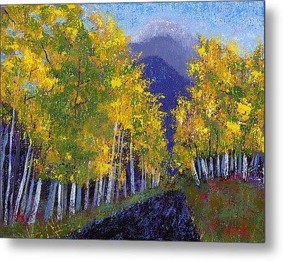 In Love With Fall River Road Metal Print by Margaret Bobb