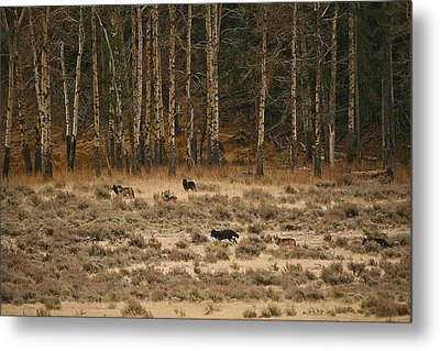 Metal Print featuring the photograph In Memory Of The Druids by Gary Hall