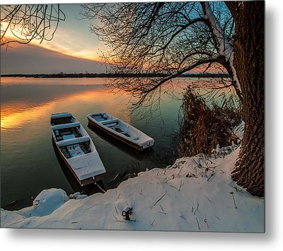 In Safe Harbor Metal Print by Davorin Mance