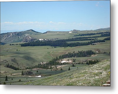 In The Bighorn Mountains Metal Print