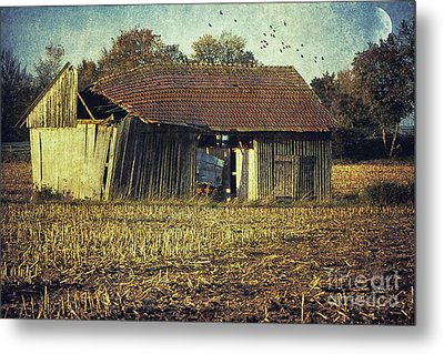 In The Country Metal Print by Jutta Maria Pusl