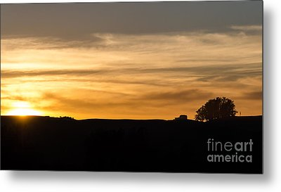 In The Evening I Rest Metal Print by CML Brown