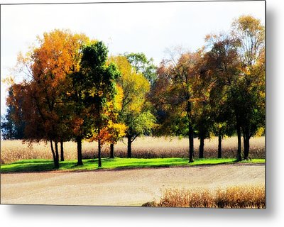 In The Field Metal Print by Andrea Dale