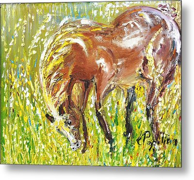 In The Field Metal Print by Evelina Popilian