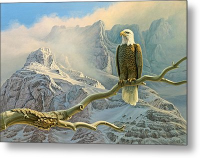 In The High Country-eagle Metal Print by Paul Krapf