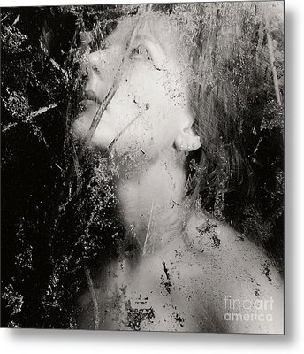 In The Light Metal Print by Sharon Coty