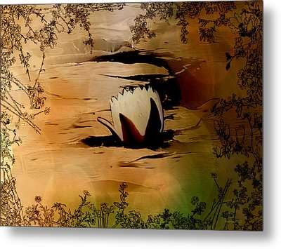 In The Lily Pond - Savannahwildliferefuge-featured In Nature Photography Metal Print by EricaMaxine  Price