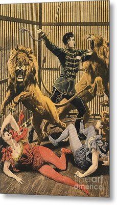 In The Lion�s Cage 1910s Uk Lion Tamers Metal Print by The Advertising Archives