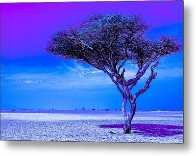In The Middle Of Nowhere Under A Purple Sky Metal Print