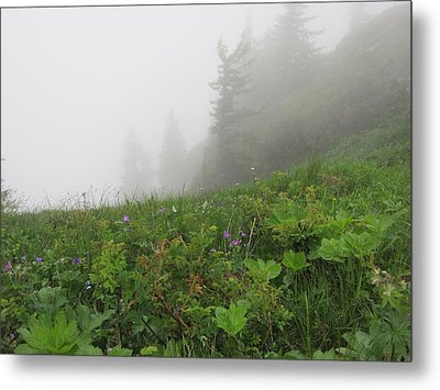 Metal Print featuring the photograph In The Mist - 1 by Pema Hou