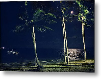 In The Moonlight Metal Print by Laurie Search