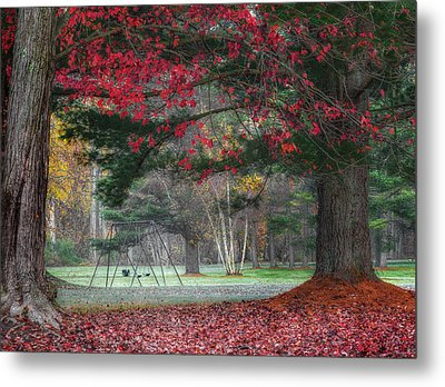 In The Park Metal Print by Bill Wakeley