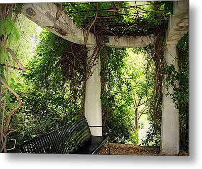 In The Park Metal Print by Thomas Fouch