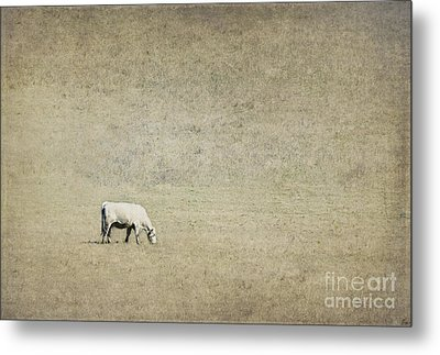 In The Pasture Metal Print by Elena Nosyreva
