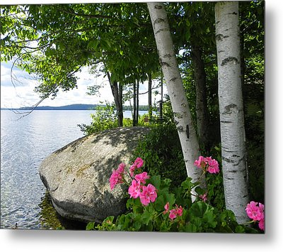 In The Shade Of The Birches Metal Print